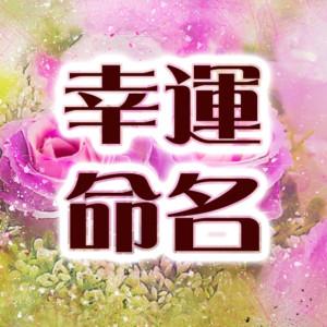 命名 熊崎式姓名判断で点数評価【幸運命名】